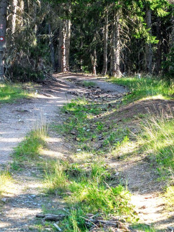 trail to Hridsko Jezero (lake)