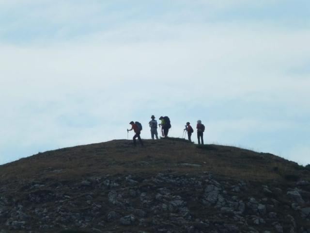 atop Gomji Lumer