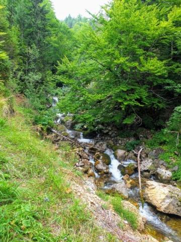 Ljevaja River