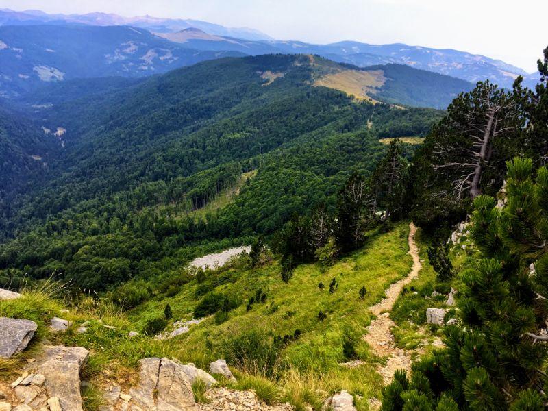 descending view