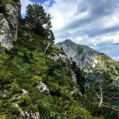 view to Vasojevicki Kom