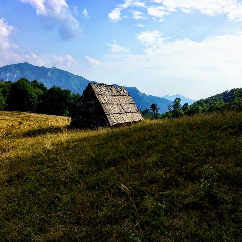 mountain shed
