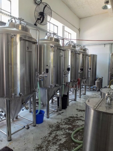 Lyra fermenters