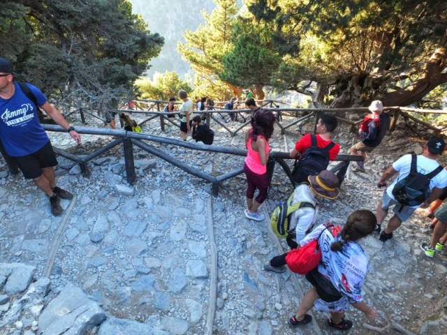 human train on switchbacks down