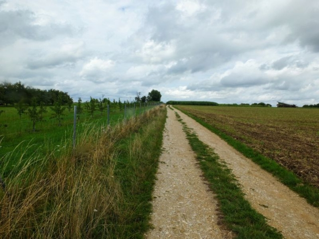 route through orchard and farmland