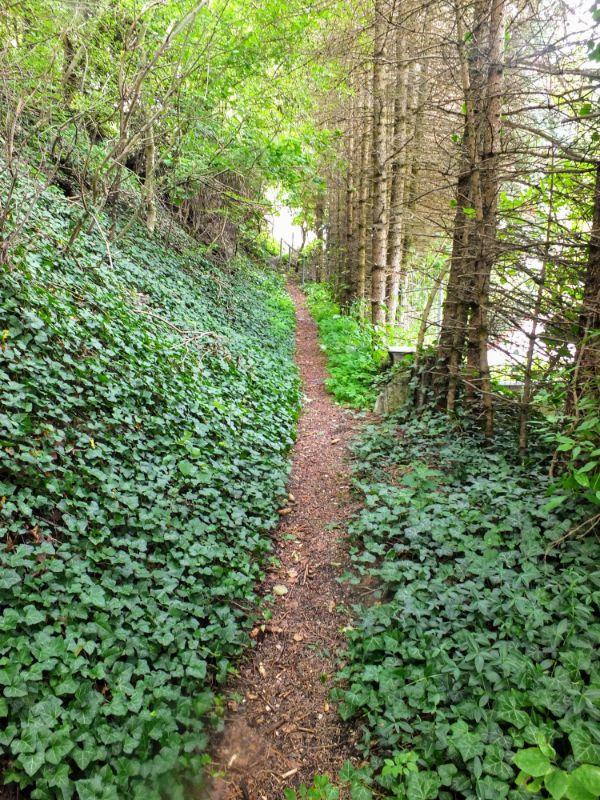 on the trail climbing to Friedman Biergarten