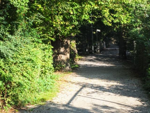 quiet walkway in town
