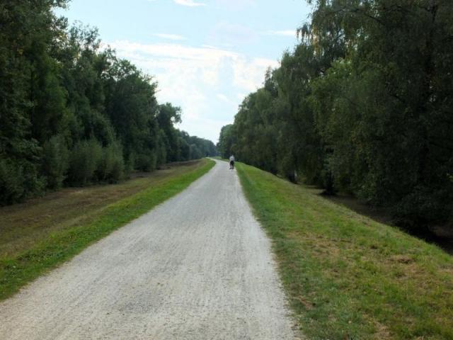 Isar levee pathway