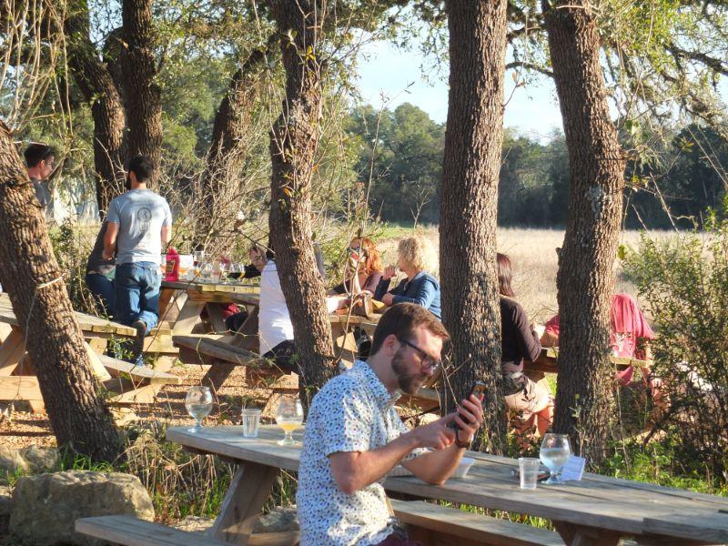 Jester Brewery Beer Garden, Austin, TX