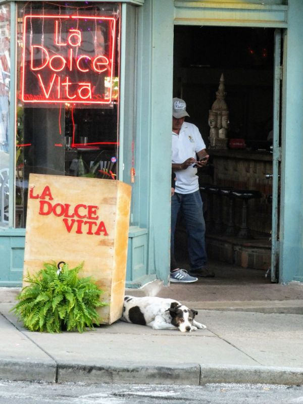Sweet Life in Little Italy