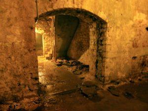 rediscovered beer cellar