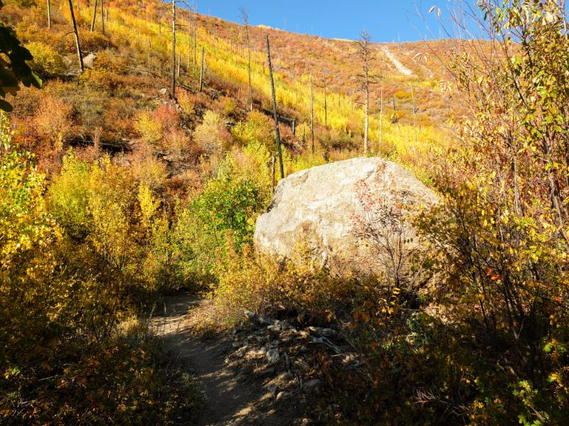boulder on the trail