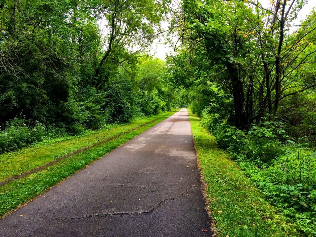 along the Oak Leaf Trail