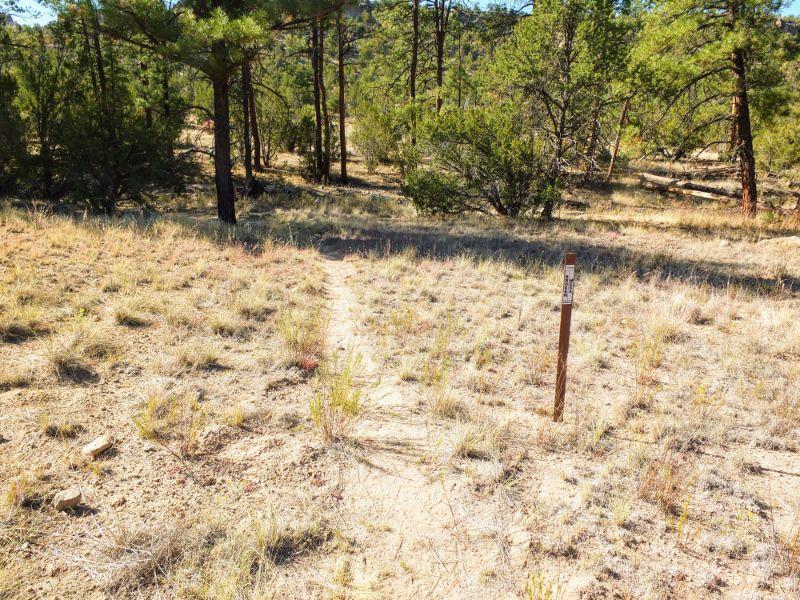 Broken Mesa Trail intersection