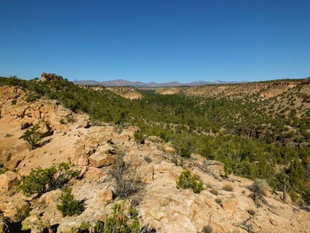 mesatop view