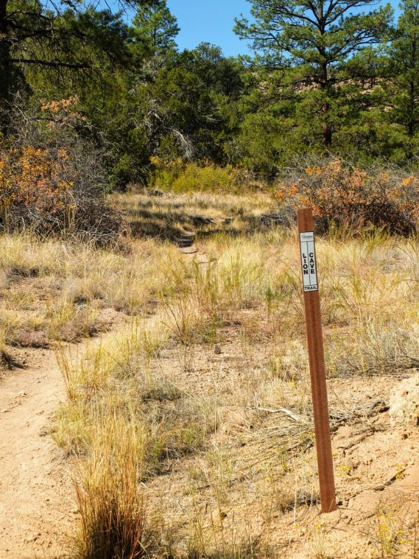 Lion Cave Trail intersection