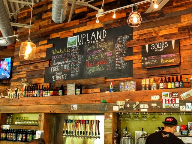 Upland Brewing line-up