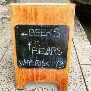 Beers or Bears