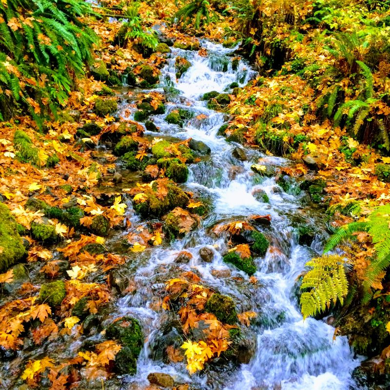 Mineral Springs Falls