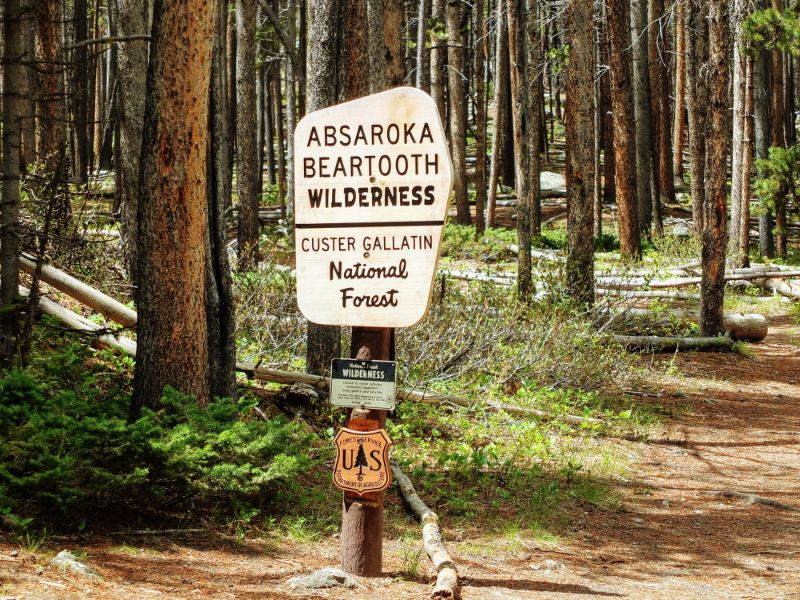 most of the route is in the Beartooth Wilderness of Custer National Forest
