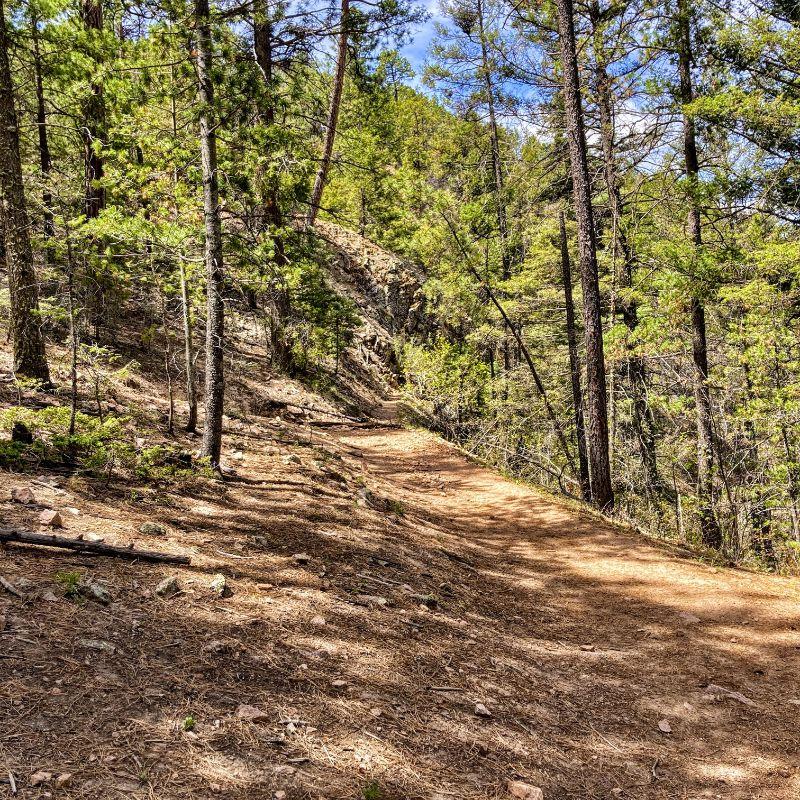 Bear Wallow Trail