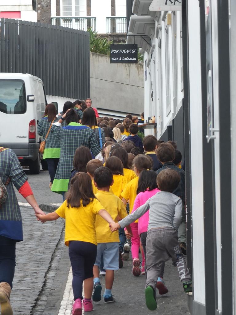 Azores Impressions - field trip