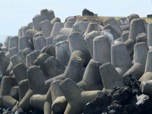 Azores Impressions - sea wall
