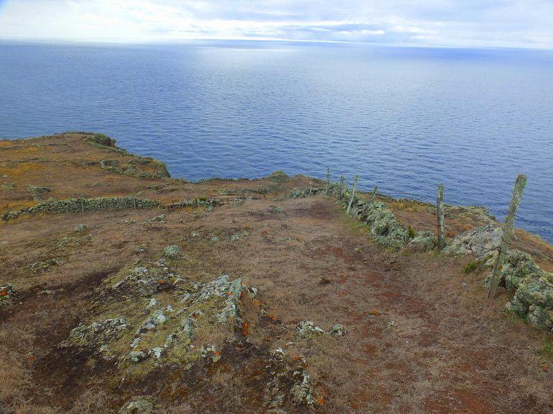 AzoresIslandTrek - DSCF9160.jpg