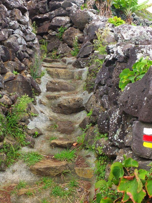 AzoresIslandTrek - DSCF9278.jpg