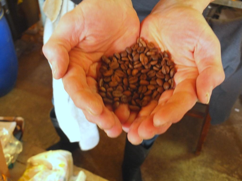 True North Brewing Company coffee