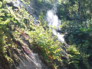 steam from hillside