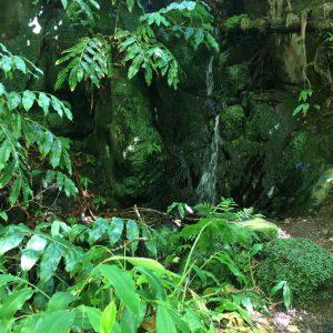 side stream