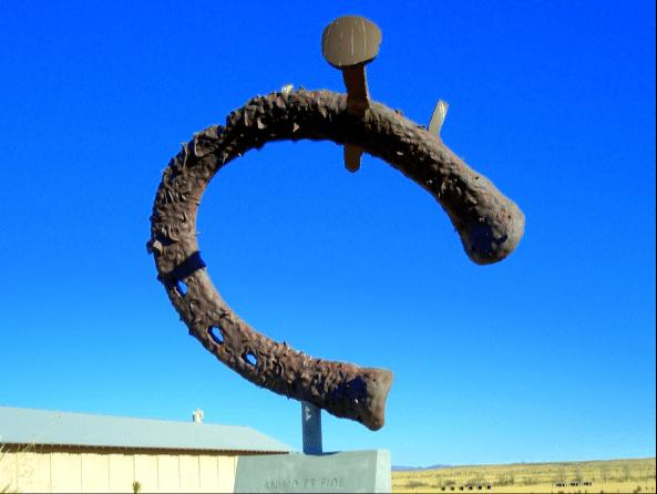 TexasYDSTED - horseshoecap.png
