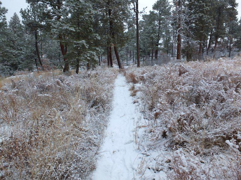 WinterHikingSouthernRockies - jDSCF6576.jpg